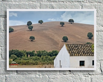 Fine Art Print, White Farmhouse with distant oak trees on hillside in rural Andalucia, Spain