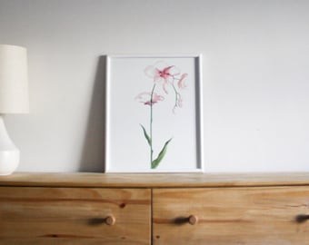 Pink Orchid Watercolor Print