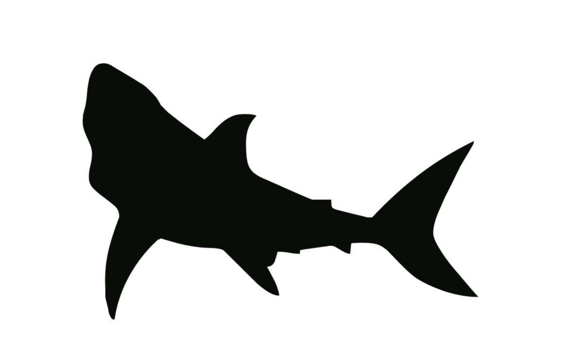 Shark Stencil Made From 4 Ply Mat Board