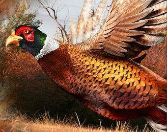Ringneck Pheasant Ob Buck Blaze LAMINATED Cornhole Wrap Bag Toss Decal Baggo Skin Sticker Wraps