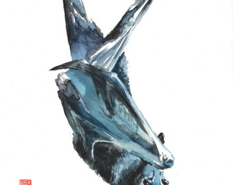 Bat Watercolor Fine Art Giclee Print / Animal painting / Wildlife painting