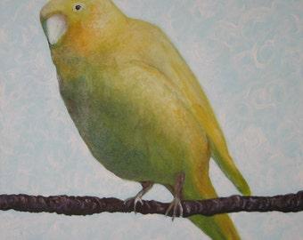 Canary Print Nursery Art Wall Art Animal Art Print Bird Print Fine Art yellow green brown office kitchen bedroom home decor – Canary 2 print