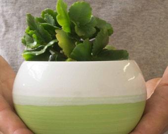 Small planter with black on white, Ceramic Succulent Planter-Cactus, Pot-Zen Minimalist-Home Decoration, Stoneware planter - Ceramic Planter