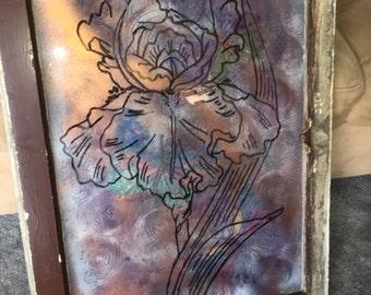 Iris on Glass