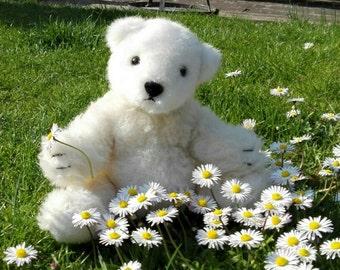 Cute polar bear / cute polar bear