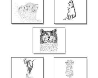 Cat Note Cards Set of Five (5) from Hand Drawn Original Artwork with Envelopes