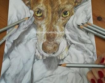 Custom pet portrait - lifelike- realistic - colour pencil - WITH background