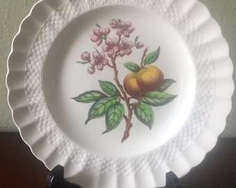 Spode Glendale Peach Luncheon Plate