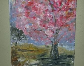 Pink Tree Blossum