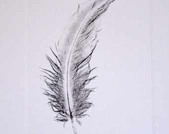 untitled (Feather print in black and brown ink)
