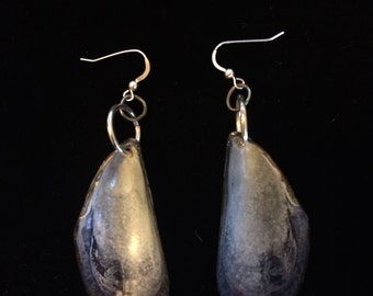 Blue Shell Earrings on Silver Posts