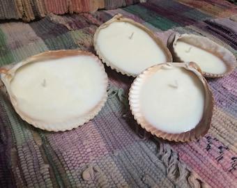 Homemade Seashell Candle