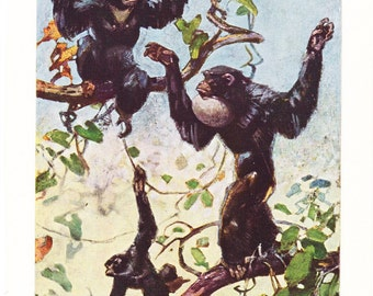 1940s Siamang Gibbon Print -  Vintage Antique Animal Zoology Zoo Primate Home Decor Book Plate Art Illustration for Framing