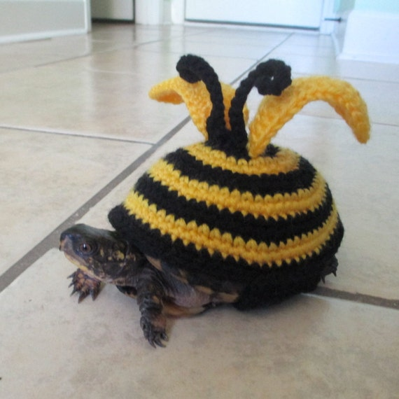 Knitting Pattern For Tortoise Jumper : Bee Turtle costume Crochet Pet turtle costume Tortoise outfit