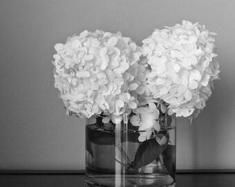Hydrangea Art, Black and White Photography Still Life Print,Fine Art Photography,White Flower Print,Black & White Print,Hydrangea Flower Art