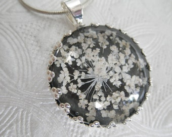 Queen Anne's Lace Beneath Glass Atop Black Background Pressed Flower Crown Pendant-Nature's Art-Symbolizes Peace-Gifts Under 25