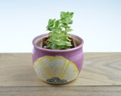 Mini Succulent Planter in Purple with Signature Floral