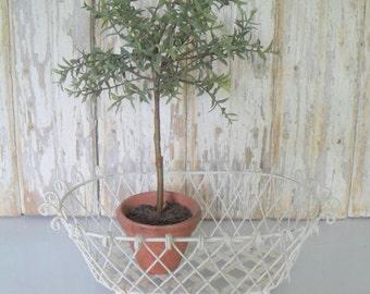 Vintage Wire Basket, Chippy Wire Basket, French Wire Basket, White Wire Basket