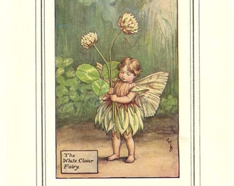 The WHITE CLOVER FAIRY Original Antique c1940 Color Plate The Book of Flower Fairies Cicely Barker