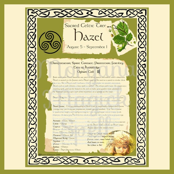HAZEL CELTIC SACRED Tree - Digital Download, Book of Shadows Page,Grimoire, Scrapbook, Spells, White Magick, Wicca, Witchcraft, Herb Magic