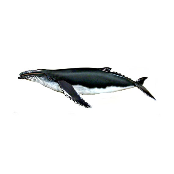 60 inch HUMPBACK WHALE woodcarving, art wood sculpture animal sculpture, animal art, Whale sculpture, wall hanging, home decor, wall art,