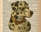 Dictionary Art Print - Dalmation Dog -  Upcycled Vintage Dictionary Page Poster Print - Size 8x10