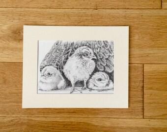 Pencil Sketch of Baby Owls Owlets Signed Sandi Hitchens England Original Art Vintage Home Decor
