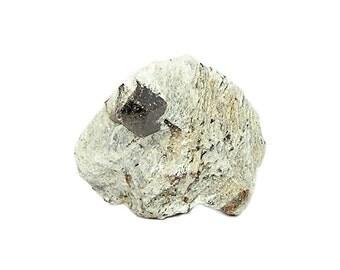 Almandine Garnet in Schist Rock Matrix Brown Gemstone Crystal Mineral Specimen Gem Crystal mined in Connecticut from an estate collection