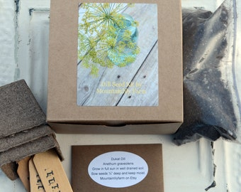 Indoor Herb Kit, Dill Seed Garden Gift, Heirloom Dill Seed, Garden Supplies in Gift Box, Great Teacher Gift or Gift for Chef, Foodie Gift