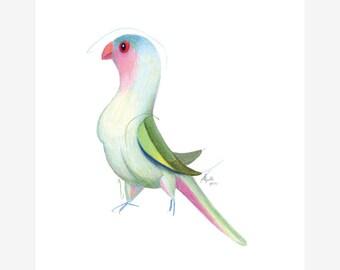 Princess Parrot Bird Print A5 Parakeet