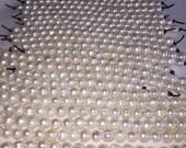 "SALE 10-11mm, 11-12mm Genuine Freshwater Pearl Strands, Large 2mm Hole, 7"" Strand 20 pcs. per Strand"