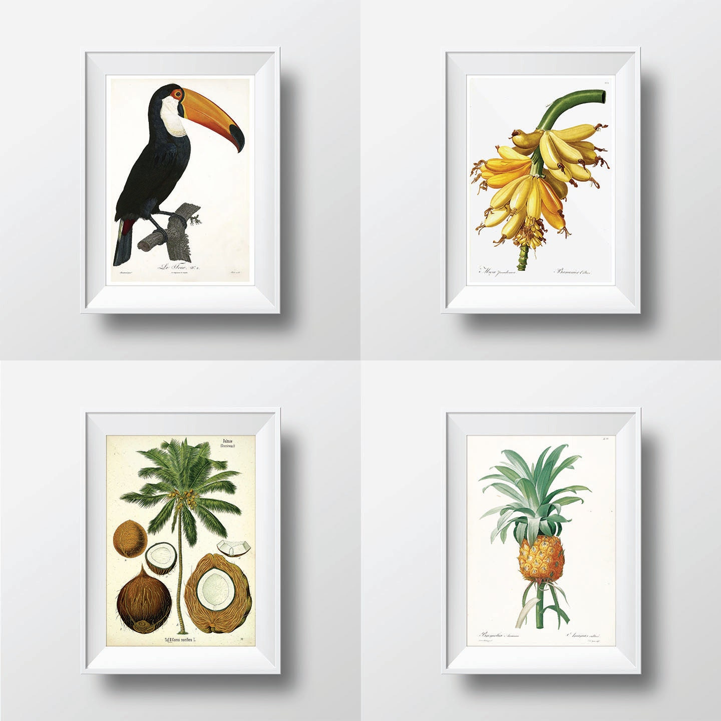Tropical decor tropical wall art print set of 4 palm tree for Tropical home decorations