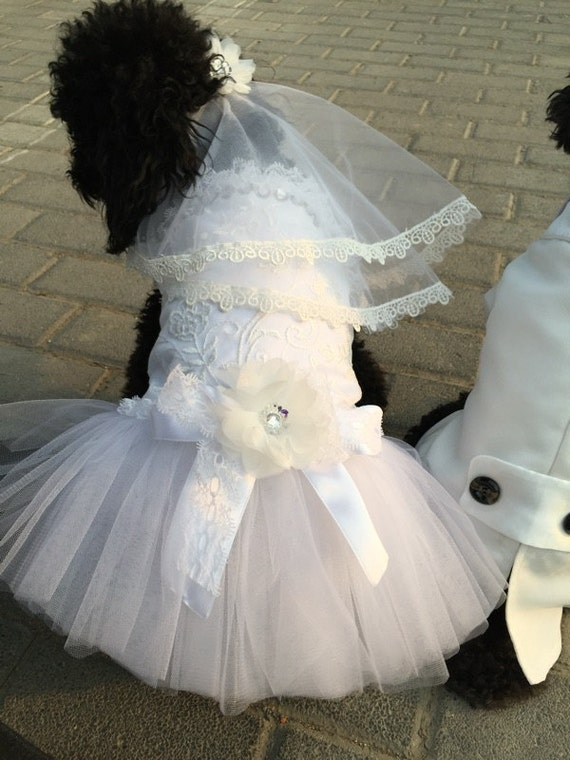 Custom made dog wedding dress made of ivory white tulle and for Wedding dress for dog