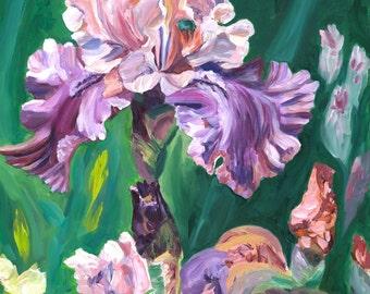 "Tall Bearded Iris ""Florentine Silk"", New Original Plein Air Oil Painting"