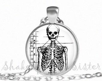Skeleton Necklace - Skeleton Pendant - Skeleton Jewelry - Skull Necklace - Skull Jewelry - Human Anatomy - Pendant Necklace
