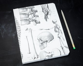 Skeleton Anatomy Hardcover Journal   Notebook Sketchbook Nurse Blank & Lined Recycled Paper, Medical, Bones Skull Human Body Doctor Science