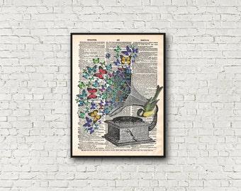 Gramophone Dictionary Art Print Birds Butteflies Songbird Home Decor Poster