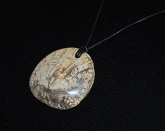 Beautiful Polished Fossilized California Sand Dollar Pendant on Leather Cord