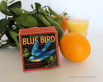 Bird Coasters - Blue Bird - Bluebird - Stone Coasters - Set of 4 - Bird Decor - Florida Gift - Florida Decor - Bar Coasters