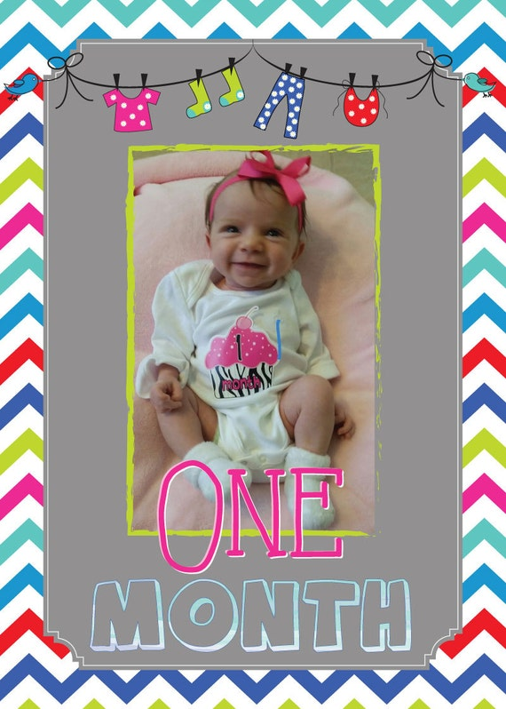 Monthly Baby 1st Year Photo Banner (digital copy)