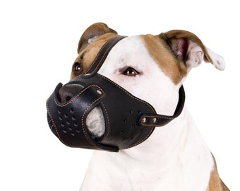 Secure Pit Bull AmStaff Basket Dog Muzzle Genuine Leather Staffordshire Terrier