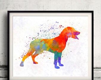 Save Valley Scenthound 01 in watercolor - Fine Art Print Glicee Poster Decor Home Watercolor Gift Illustration Dog  - SKU 2443
