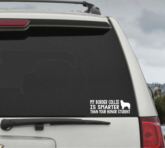 My Border Collie  is smarter than your honor student - Car Window Decal Sticker