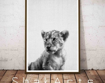 Baby Lion Print, Safari Baby Shower, Baby Animal Prints, Black and white Lion Photo, Child room Decor, Dorm Decorations, Printable Nursery