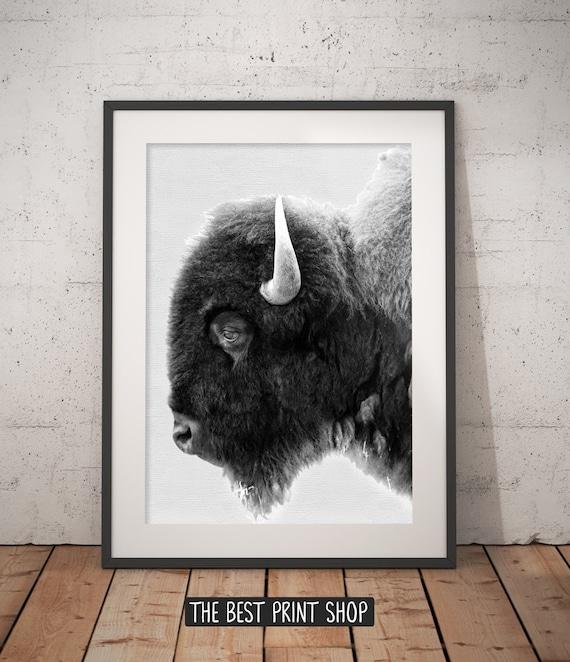 White buffalo nürnberg