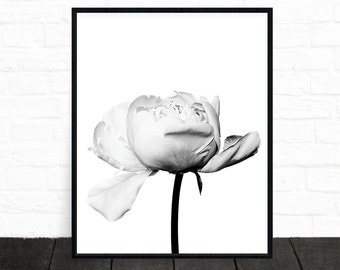 Flower Wall Art, Floral Print, Black and White, Floral Art, Flower Art, Modern Wall Art, Scandinavian Print, Minimalist Decor, Printable Art
