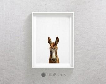 Donkey Print, Farmhouse Decor, Printable Wall Art, Instant Download, Country Home Rustic Decor, Donkey Poster, Farm Animal Prints, Brown Art