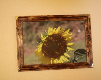 Burnished and Brassy Original frames and prints by Lemuel