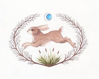 Run Rabbit Run 5x7 8x10 Watercolor Fine Art Print ©Cara Finnerty Coleman