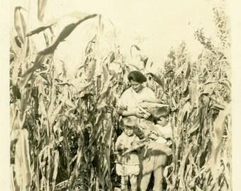 "Vintage Photo ""Picking Ears"" Kids Corn Field Farm Snapshot Old Antique Photo Black & White Photograph Found Paper Ephemera Vernacular - 147"